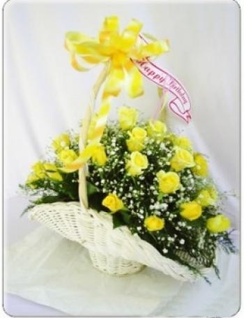 hoa sinh nhat hsn009