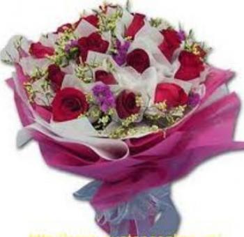 hoa bo hb011