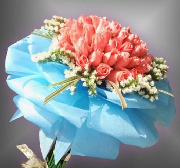 hoa bo hb017