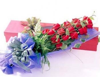 hoa sinh nhat hsn020