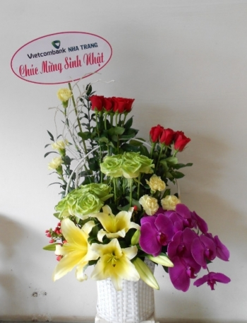 hoa sinh nhat hsn021