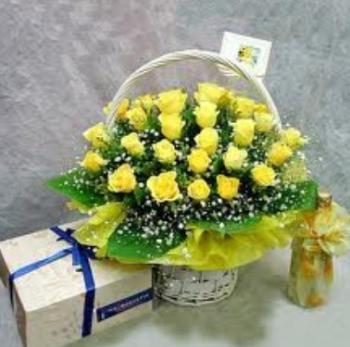 hoa sinh nhat hsn029