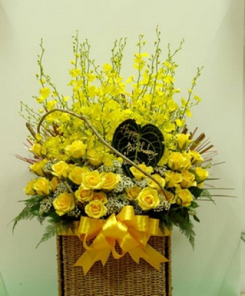 hoa sinh nhat hsn037