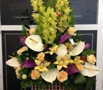 hoa sinh nhat hsn041