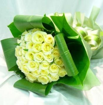 hoa sinh nhat hsn046