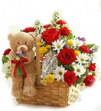 hoa sinh nhat hsn054