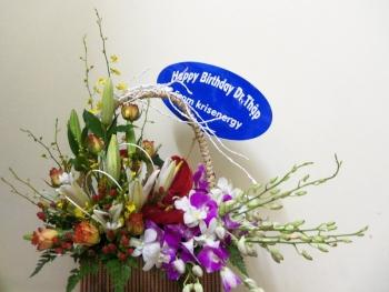 hoa sinh nhat hsn056