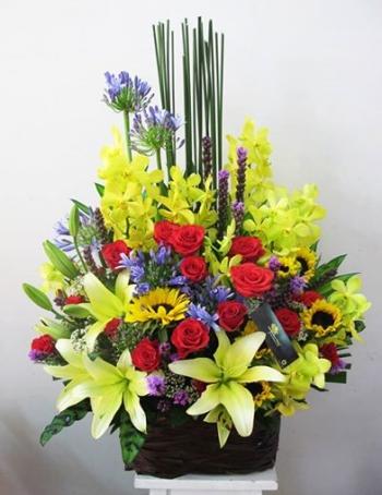 hoa sinh nhat hsn064