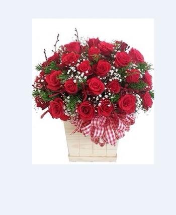 hoa ngay le hnl070