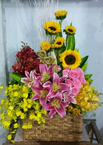 hoa sinh nhat hsn089