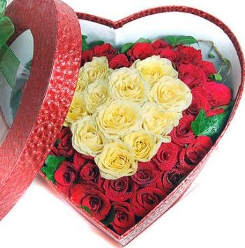 hoa ngay le hnl143