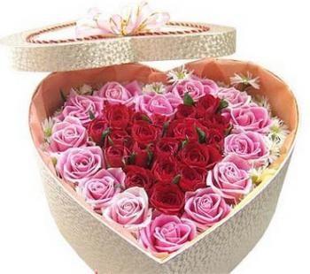 hoa ngay le hnl144