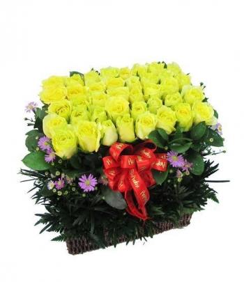 hoa ngay le hnl156