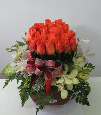 hoa ngay le hnl167