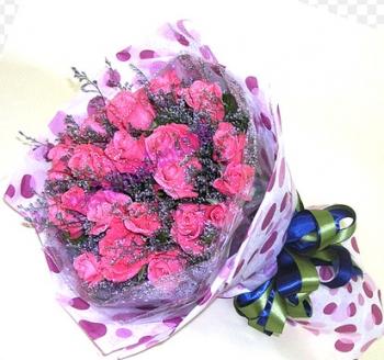 hoa ngay le hnl168