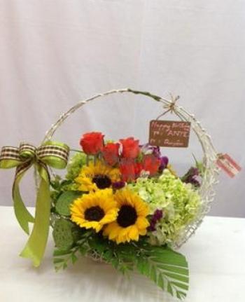 hoa ngay le hnl176