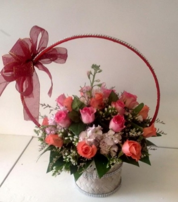 hoa ngay le hnl178