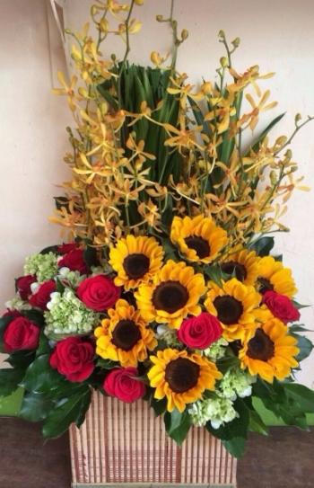 hoa ngay le hnl189