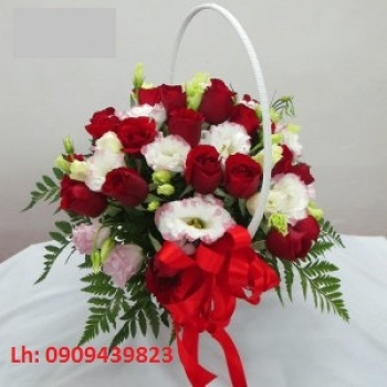 hoa ngay le hnl211