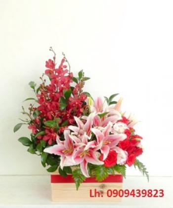 hoa ngay le hnl214
