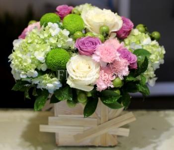 hoa ngay le hnl219