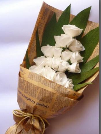hoa bo hb015